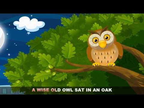 A wise old owl lived in an oak