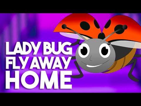 Ladybird ladybird Fly away home