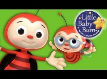 one little ladybug