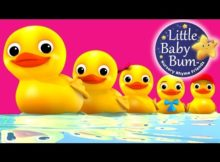 One little duck say is quack
