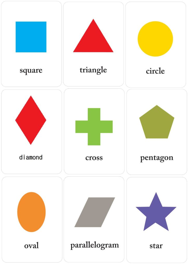 Learning Shapes Image